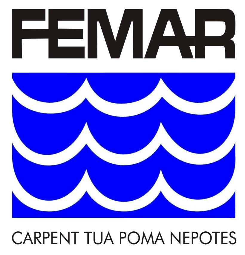 LogoFEMAR